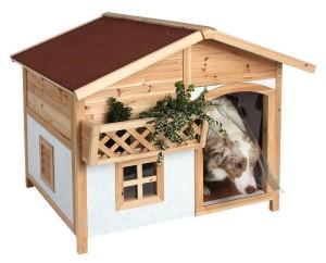isolierte hundehütte 5