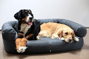 Hundecouch 3