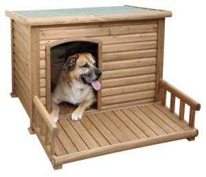 Hundehütte mit Terrasse 1