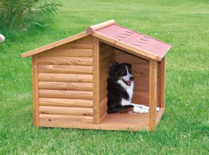 Hundehütte mit Terrasse 2