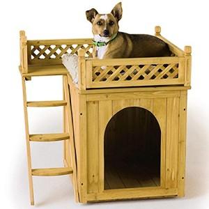 Hundehütte mit Terrasse 3