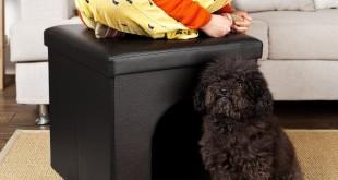 Hundehaus für die Wohnung 2