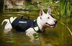 Schwimmweste Hund 11